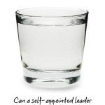 Can A Self-Appointed Leader Bring About Positive Change?