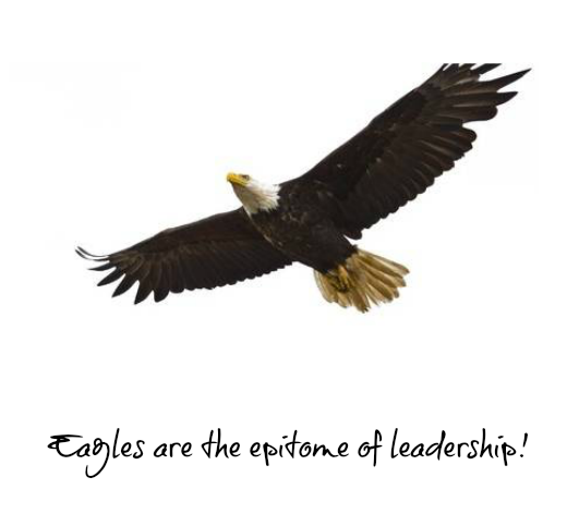 Leading On Management: You Can't FLY with the Eagles